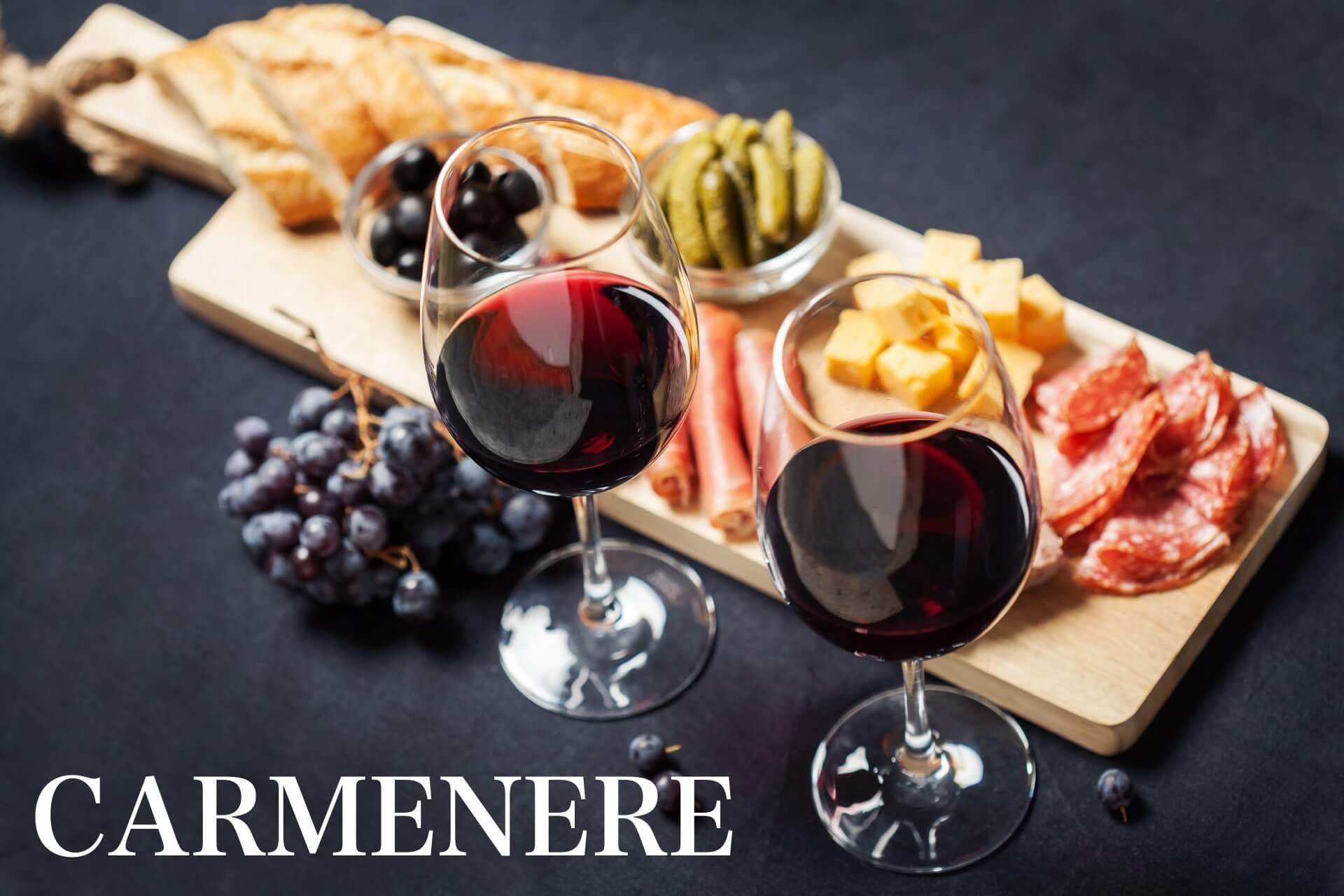 カルメネールおすすめワインのメインビジュアル画像