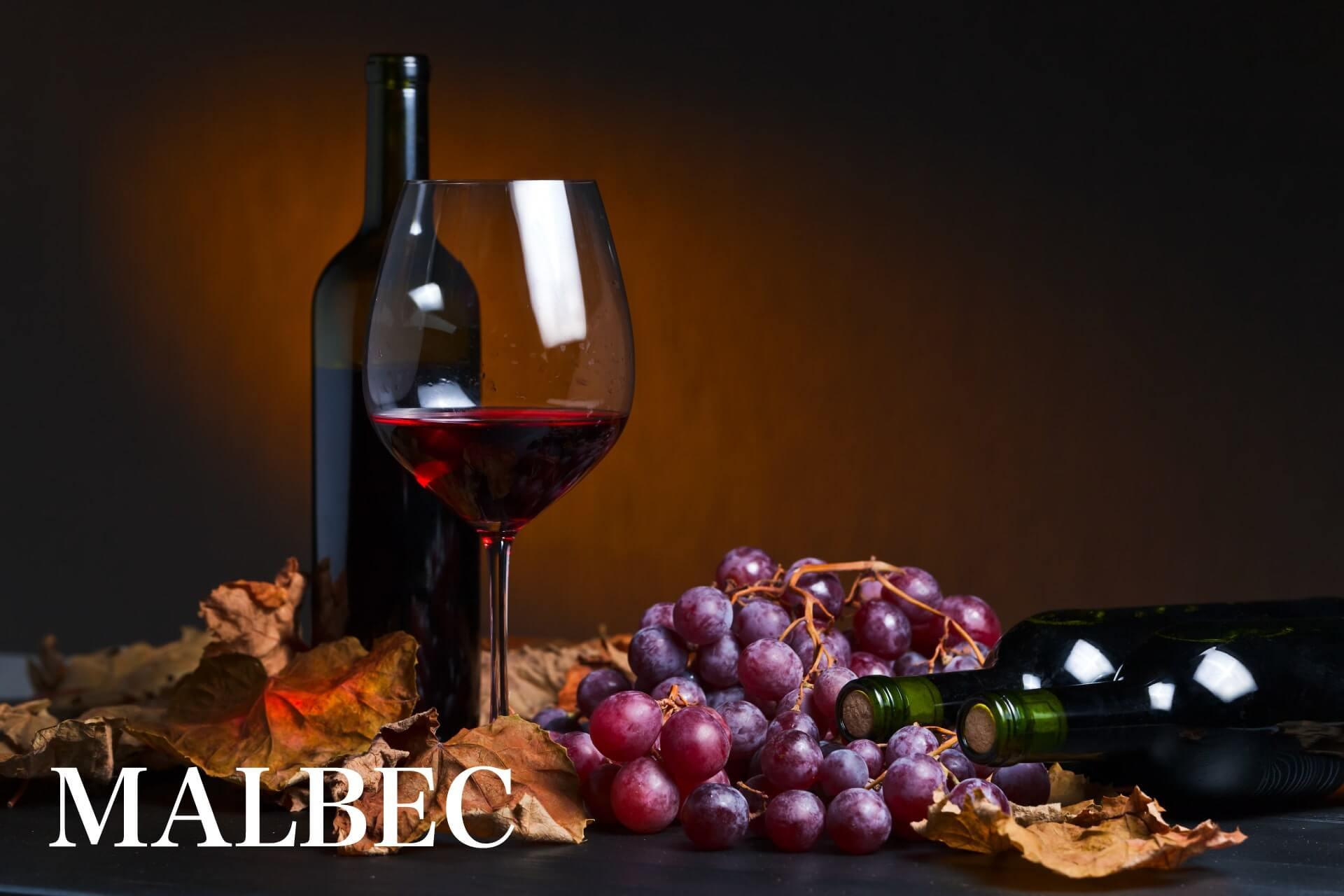 マルベックおすすめワインのメインビジュアルの画像