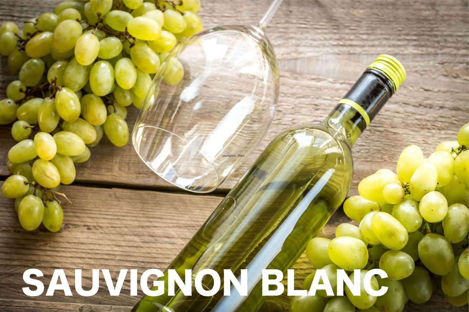ソーヴィニヨンブラン(ワイン)のメインビジュアルの画像